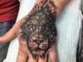 Hand Lion Stripe